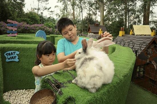anak - anak bermain dengan kelinci di arena permainan anak-anak dusun bambu lembang